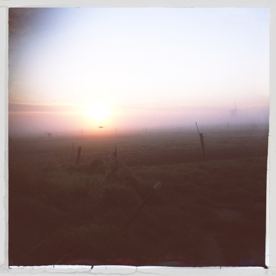 Past Dawn