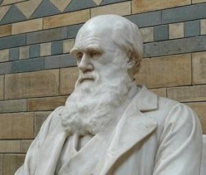 Mastery 2 - Darwin