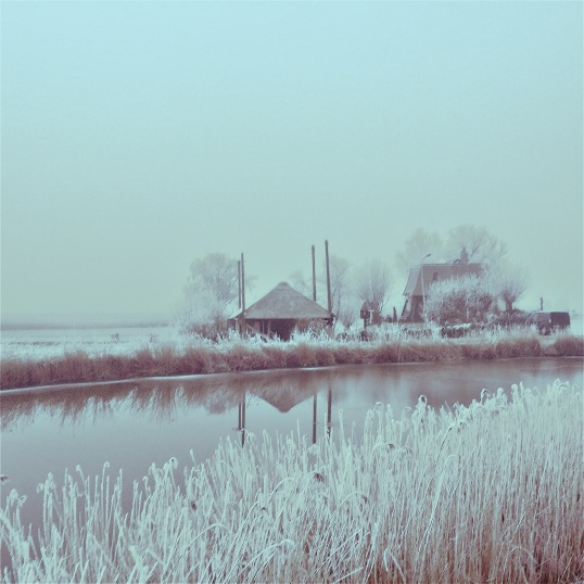 winter-in-de-schermerpolder-2
