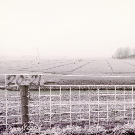 winter-in-de-schermerpolder-5